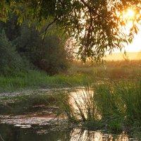 На исходе дня... :: Юрий Морозов