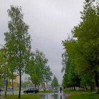 Первый дождь :: Мария Т