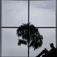 Аэропорт... :: Irina Kovaleva