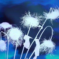 Белые цветы сновидений :: Ирина Сивовол