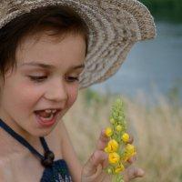 Цветок :: Анна Емельянова