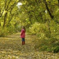 Осень :: Наталья Бутырская