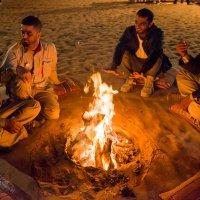 Как-то в пустыне :: MVMarina