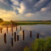 Утренняя столбовая... :: Roman Lunin