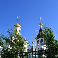 Кафедральный собор :: Ольга