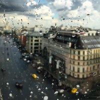 капли дождя :: Владимир Гулевич