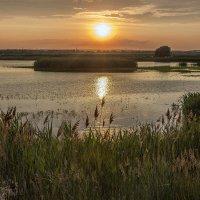 Закат на рыбхозе :: Юрий Клишин