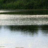 Зеленое  озеро... :: Валерия  Полещикова