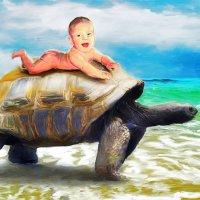Покатай меня большая черепаха. :: Денис Добровольский