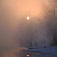 утро :: Алексей Мелузов