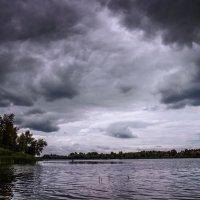 Дождливый июнь 2015 :: Sergey Анциферов