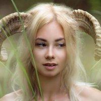 Бедная овечка :: Maksim Checck