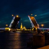 Разводной мост СПб :: Николай Густов