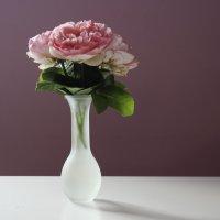 Розы :: Алеся Макина