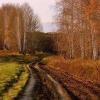 Осень на просёлочной дороге :: Seva-stopol (Севастьян)