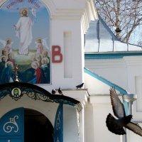 Голуби  у  Храма...Церковь-часовня Сергия Радонежского в Пензе. :: Валерия  Полещикова