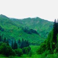 Кавказ... :: Ксения Л.
