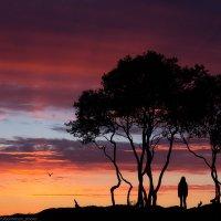 Северная Кения :: Александр Бобрецов