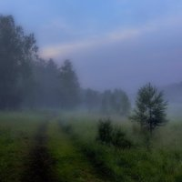 Туман в июле :: Анатолий Иргл