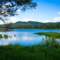 Озеро :: Андрей Зарубин