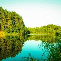 Озеро :: Евгения Шапошник