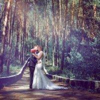 сказочный лес :: Ирина