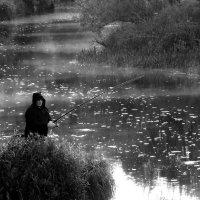 Тишина... :: Марина Морозова