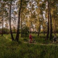Пока горит навстречу нам зелёный :: Ирина Данилова