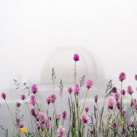 Башня в облаке 2 :: Роман Небоян