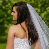 Свадьба :: Андрей Шилка