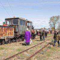 На поезд :: Caша Джус