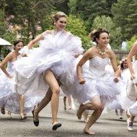 Сбежавшие невесты :: Максим Хрусталев