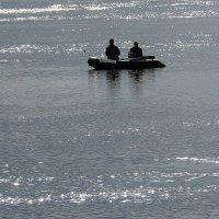 рыбалка в серебре :: Александр Прокудин