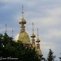 Купола Предтеченской церкви вТамбове. :: °•●Елена●•° Аникина♀