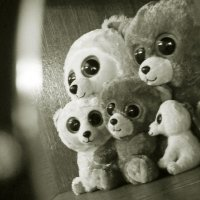 Семья медведей. :: сергей лебедев