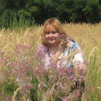 Соберу я  цветы полевые... :: Елена Семигина
