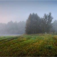 Утро :: Сергей Шабуневич