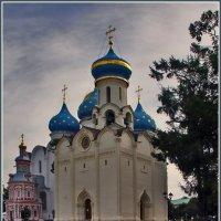 в Сергиевой лавре :: Дмитрий Анцыферов