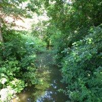 Река Киндерка. :: Наиля
