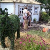 зеленые домашние животные :: Олег Лукьянов