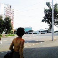 Где то там проходят Саммиты БРИКС и ШОС в Уфе. :: Владимир Ростовский