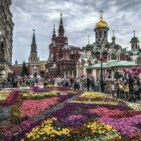 Фестиваль цветов :: GaL-Lina .