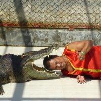 Таиланд, шоу крокодилов :: Юрий Петряев