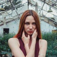 Юлия :: Ольга Пышкина