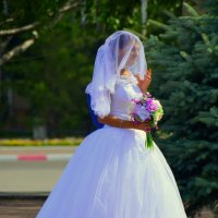 Невеста :: Константин Шарун