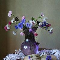 Васильки для друзей :: lady-viola2014 -