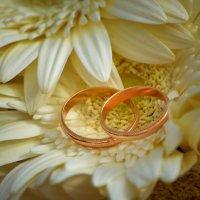 Свадьба Гилевы :: Мария Туркина