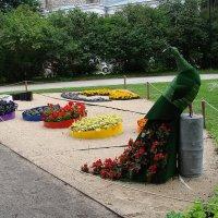 Фестиваль цветов в Таллине 2015 :: laana laadas
