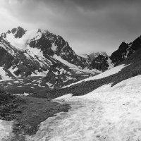 Июнь на Талгарском перевале :: Людмила Быстрова