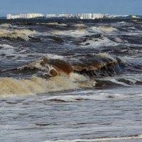 Где Белое море шумит... :: Елена Третьякова